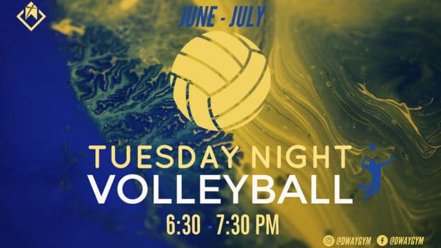 Dauphin Way Volleyball Night