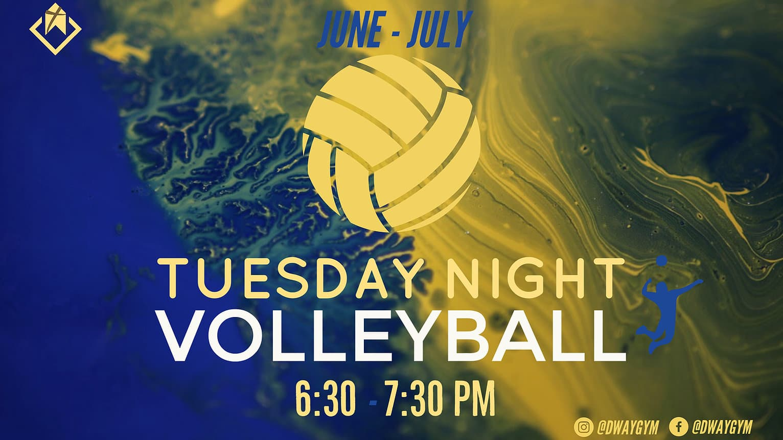 Dauphin Way Volleyball Night